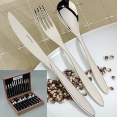 Arthur Price Cutlery Essence 44 piece canteen